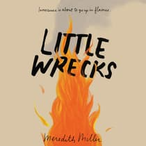 Little Wrecks by Meredith Miller audiobook