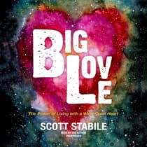 Big Love by Scott Stabile audiobook