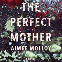 The Perfect Mother by Aimee Molloy audiobook