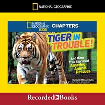 National Geographic Kids Chapters: Tiger in Trouble! by Kelly Milner Halls audiobook