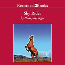 Sky Rider by Nancy Springer audiobook