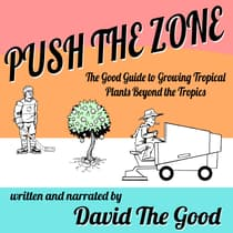 Push the Zone by David the Good audiobook