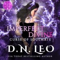 Imperfect Divine by D.N. Leo audiobook