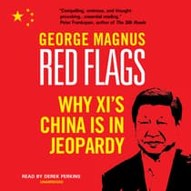 Red Flags by George Magnus audiobook