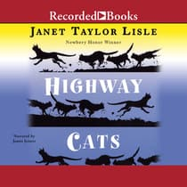 Highway Cats by Janet Taylor Lisle audiobook