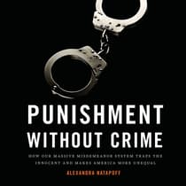 Punishment Without Crime by Alexandra Natapoff audiobook