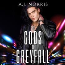 The Gods of Greyfall Collection by A.J. Norris audiobook