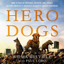 Hero Dogs by Wilma Melville audiobook