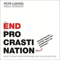 The End of Procrastination by Petr Ludwig audiobook