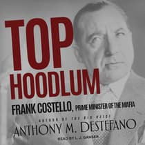 Top Hoodlum by Anthony M. DeStefano audiobook