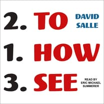 How to See by David Salle audiobook