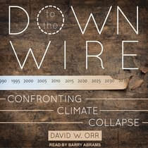Down to the Wire by David W. Orr audiobook