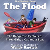 The Flood by Wendy Bartlett audiobook