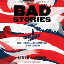 Bad Stories by Steve Almond audiobook