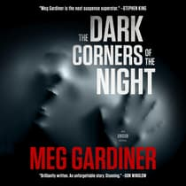 The Dark Corners of the Night by Meg Gardiner audiobook