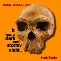 It was a dark and stormy night by Mark Binder audiobook