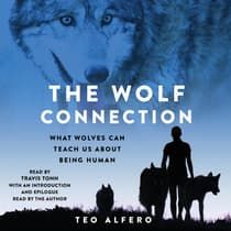 The Wolf Connection by Teo Alfero audiobook
