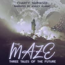 The Maze by Charity Tahmaseb audiobook