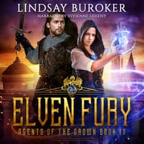 Elven Fury by Lindsay Buroker audiobook