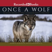 Once a Wolf by Bryan Sykes audiobook