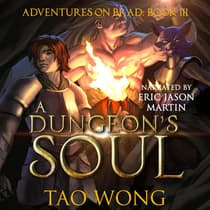 A Dungeon's Soul by Tao Wong audiobook