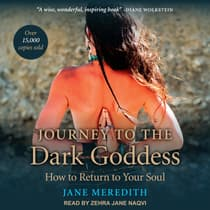 Journey to the Dark Goddess by Jane Meredith audiobook