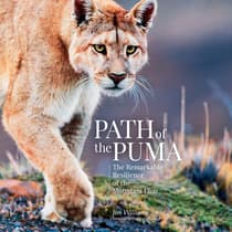 Path of the Puma by Jim Williams audiobook