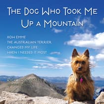 The Dog Who Took Me Up a Mountain by Joseph Cosgriff audiobook