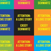 Attention: A Love Story by Casey Schwartz audiobook