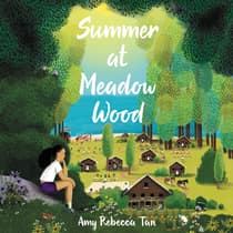 Summer at Meadow Wood by Amy Rebecca Tan audiobook