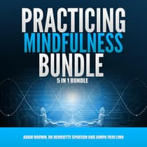 Practicing Mindfulness Bundle by Adam Brown audiobook