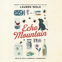 Echo Mountain by Lauren Wolk audiobook