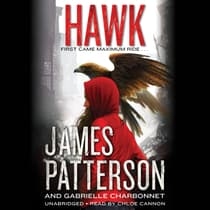 Hawk by James Patterson audiobook