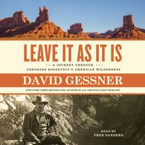 Leave It As It Is by David Gessner audiobook