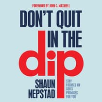 Don't Quit in the Dip by Shaun Nepstad audiobook