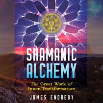Shamanic Alchemy by James Endredy audiobook