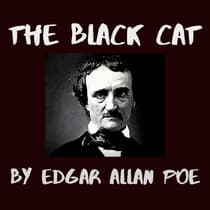 The Black Cat by Edgar Allan Poe audiobook