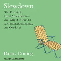 Slowdown by Danny Dorling audiobook