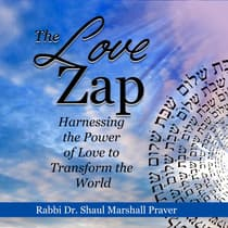 The Love Zap by Shaul Marshall Praver audiobook