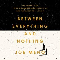 Between Everything and Nothing by Joe Meno audiobook
