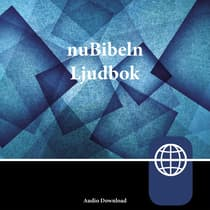 nuBibeln, Audio Download by Zondervan audiobook