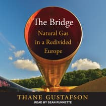The Bridge by Thane Gustafson audiobook