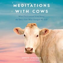 Meditations with Cows by Shreve Stockton audiobook