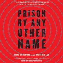 Prison by Any Other Name by Victoria Law audiobook
