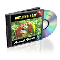 Hot Jungle Day - Relaxation Music and Sounds by Empowered Living audiobook