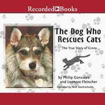 The Dog Who Rescues Cats by Philip Gonzalez audiobook