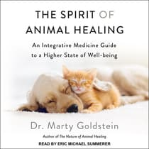 The Spirit of Animal Healing by Marty Goldstein audiobook