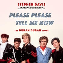 Please Please Tell Me Now by Stephen Davis audiobook