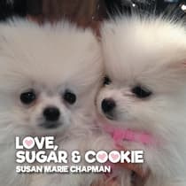 Love, Sugar and Cookie by Susan Marie Chapman audiobook