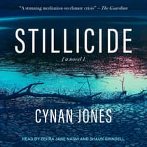 Stillicide by Cynan Jones audiobook